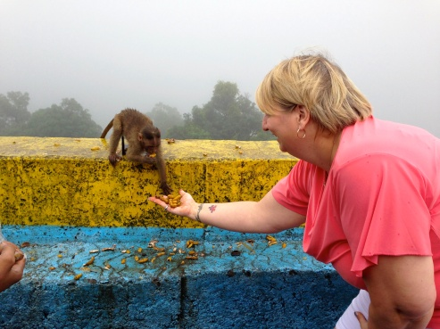 Me feeding a friendly Mumbai monkey.